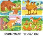 small set of cute wild animals. ... | Shutterstock . vector #492064102