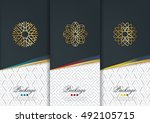 vector set of templates... | Shutterstock .eps vector #492105715