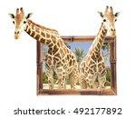 Two Giraffes In Bamboo Frame...