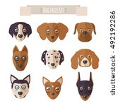 dog faces set in flat style.... | Shutterstock .eps vector #492192286