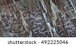 petroglyphs in the altai... | Shutterstock . vector #492225046