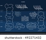 diagram of cloud types and... | Shutterstock .eps vector #492271432