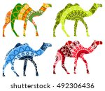 bactrian camel indian. camel... | Shutterstock .eps vector #492306436