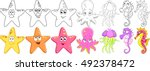cartoon animals set. underwater ... | Shutterstock .eps vector #492378472