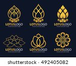 gold lotus logo vector... | Shutterstock .eps vector #492405082