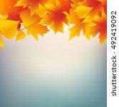 autumn leaves plant frame.... | Shutterstock .eps vector #492419092