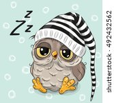 sleeping cute owl in a hood on... | Shutterstock .eps vector #492432562