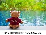 Back View Of Teddy Bear Wearin...