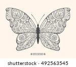 amazing fly butterfly. wild...   Shutterstock .eps vector #492563545