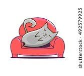 grey cat lying on red sofa.... | Shutterstock .eps vector #492579925