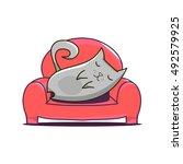 grey cat lying on red sofa.... | Shutterstock .eps vector #492579925