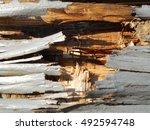 background texture brown wood ... | Shutterstock . vector #492594748