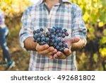 closeup view of man holding...   Shutterstock . vector #492681802