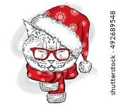 Funny Cat In A Christmas Hat...