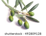 green olives with leaves on a... | Shutterstock . vector #492809128