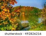 swamp landscape with sun beam | Shutterstock . vector #492826216