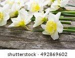 white daffodil flowers on old... | Shutterstock . vector #492869602