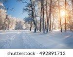 winter park in snow | Shutterstock . vector #492891712