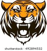 vector illustration head... | Shutterstock .eps vector #492894532