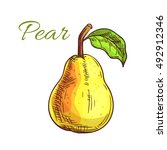 juicy pear fruit isolated...   Shutterstock .eps vector #492912346