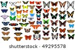 Big Vector Collection Of...