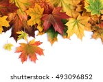 Border Of Colorful Autumn Mapl...