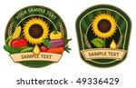 background | Shutterstock .eps vector #49336429