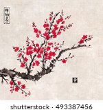oriental sakura cherry tree in... | Shutterstock .eps vector #493387456