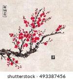 oriental sakura cherry tree in... | Shutterstock .eps vector #493387456