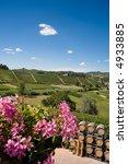wine barrels in a winery ... | Shutterstock . vector #4933885