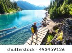 hiking man in canadian... | Shutterstock . vector #493459126