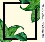 hand painted watercolor... | Shutterstock . vector #493477456