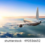 commercial airplane flying... | Shutterstock . vector #493536652