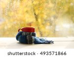 red circle in the cozy warm... | Shutterstock . vector #493571866