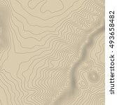 topographic map background... | Shutterstock . vector #493658482