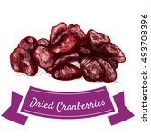 dried cranberries colorful... | Shutterstock .eps vector #493708396