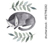Stock photo cute gray sleeping cat watercolor kids illustration with domestic animal sleeping lovely pet 493798282