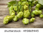 fresh green hops | Shutterstock . vector #493869445