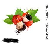 Guarana Fruit Isolated On Whit...