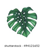 watercolor tropical palm leaves. | Shutterstock . vector #494121652