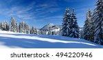 winter landscape  spruce tree...   Shutterstock . vector #494220946