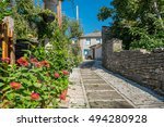 stone walkway and house in... | Shutterstock . vector #494280928