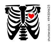 chest  rib  vector  skeleton ... | Shutterstock .eps vector #494304625