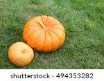 Big And Small Pumpkins On A...