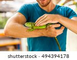 Stock photo amazing close up photo man holding in his arms green lizard iguana on background scenic tropical 494394178