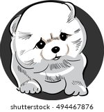 puppy | Shutterstock .eps vector #494467876