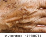 freckle on skin closeup | Shutterstock . vector #494488756