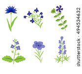Blue Vector Flowers Isolated Set
