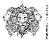 hand drawn vector illustration... | Shutterstock .eps vector #494585116
