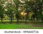 sunset at green city public... | Shutterstock . vector #494660716